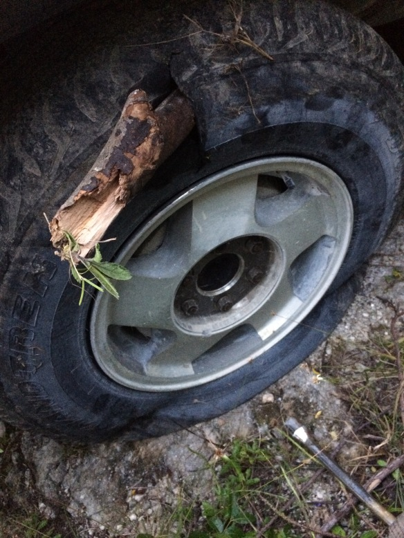 Tire with stick