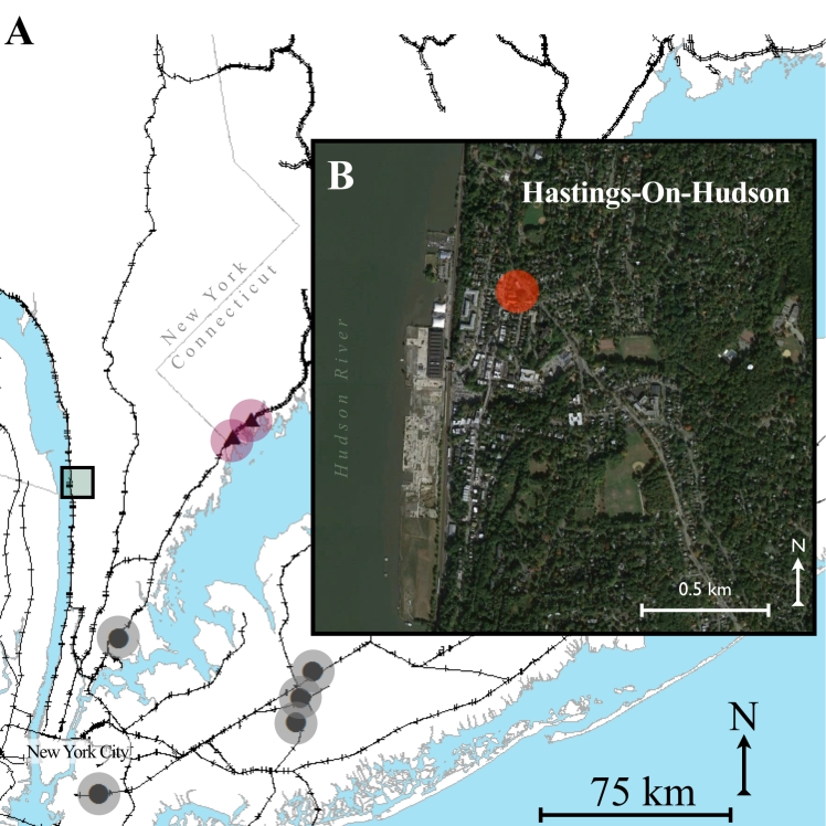 hastings-on-hudson-001